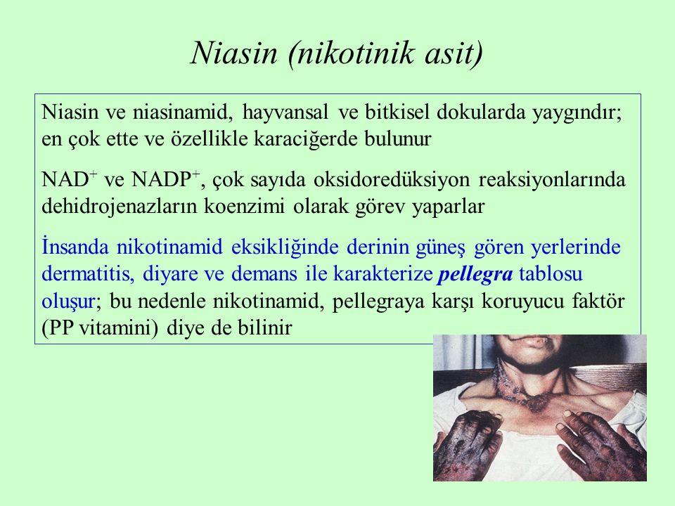 Niasin (nikotinik asit) Niasin ve niasinamid, hayvansal ve bitkisel dokularda yaygındır; en çok ette ve özellikle karaciğerde bulunur NAD + ve NADP +,