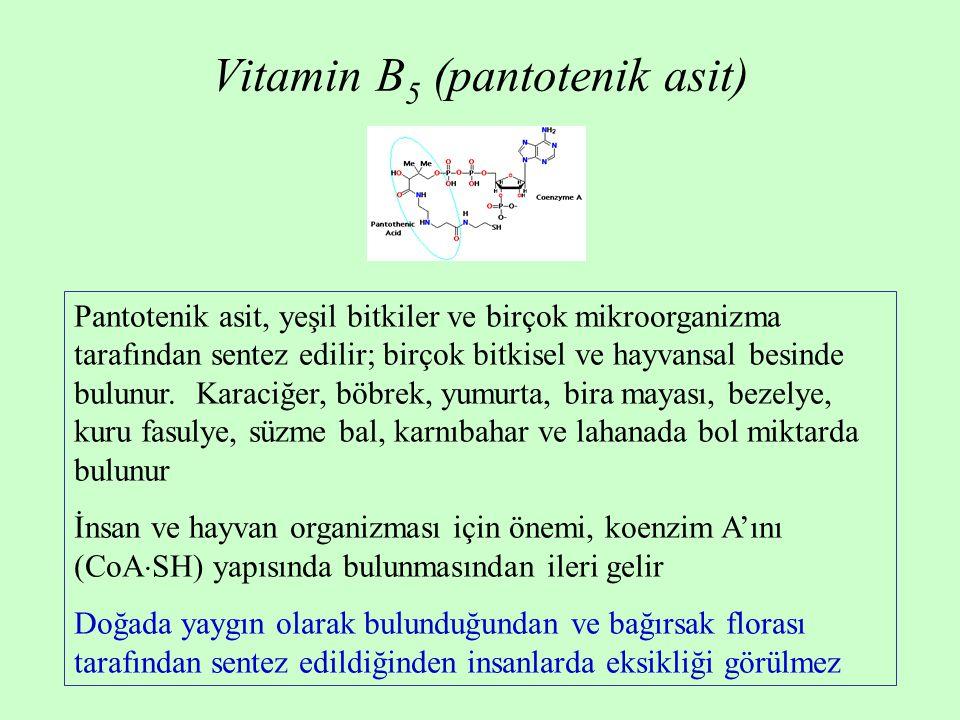 Vitamin B 5 (pantotenik asit) Pantotenik asit, yeşil bitkiler ve birçok mikroorganizma tarafından sentez edilir; birçok bitkisel ve hayvansal besinde
