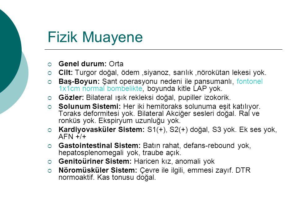 Laboratuvar  WBC: 32.500/mm³  NEU: 18.200/mm³  HGB: 8,7g/dl  PLT: 783.000/mm³  MCV: 82,9fl  Glukoz: 98 mg/dl  Kreatinin: 0,35 mg/dl  AST: 27U/L  ALT: 15U/L  Na: 134 mEq/L  K: 4.86 mEq/L  CRP:23 mg/dl  Sedimentasyon:58mm/h