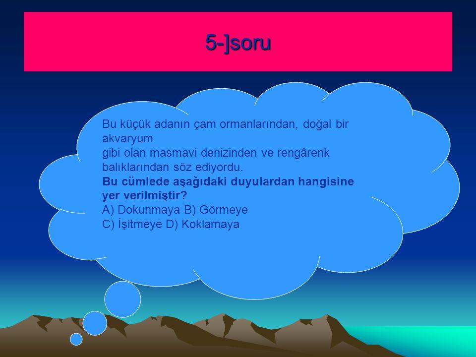 5-]soru Bu küçük adanın çam ormanlarından, doğal bir akvaryum gibi olan masmavi denizinden ve rengârenk balıklarından söz ediyordu.