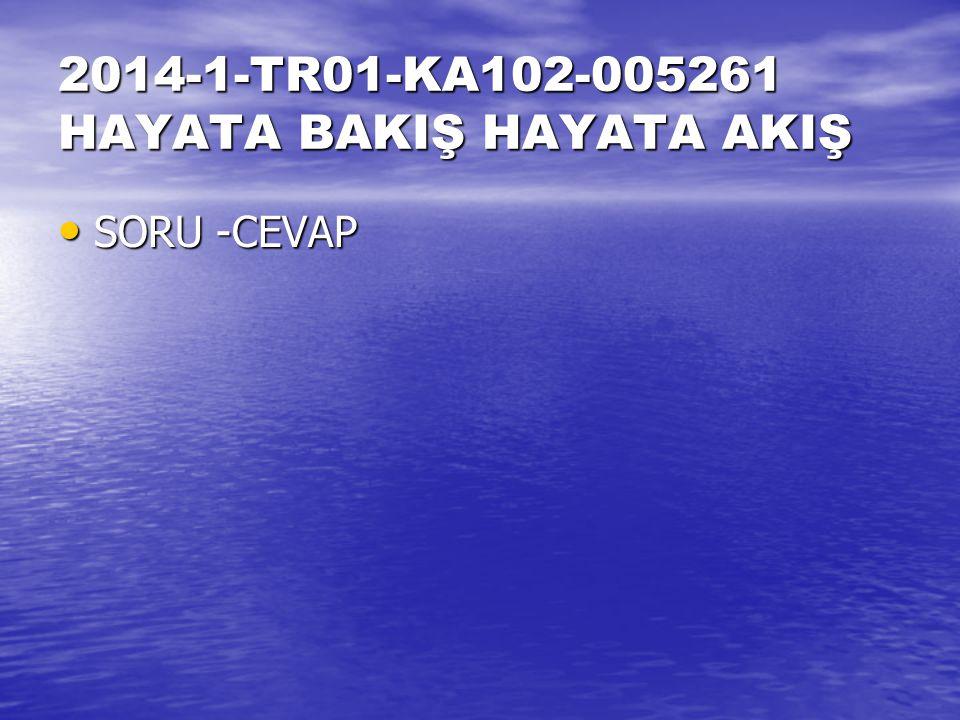 2014-1-TR01-KA102-005261 HAYATA BAKIŞ HAYATA AKIŞ SORU -CEVAP SORU -CEVAP