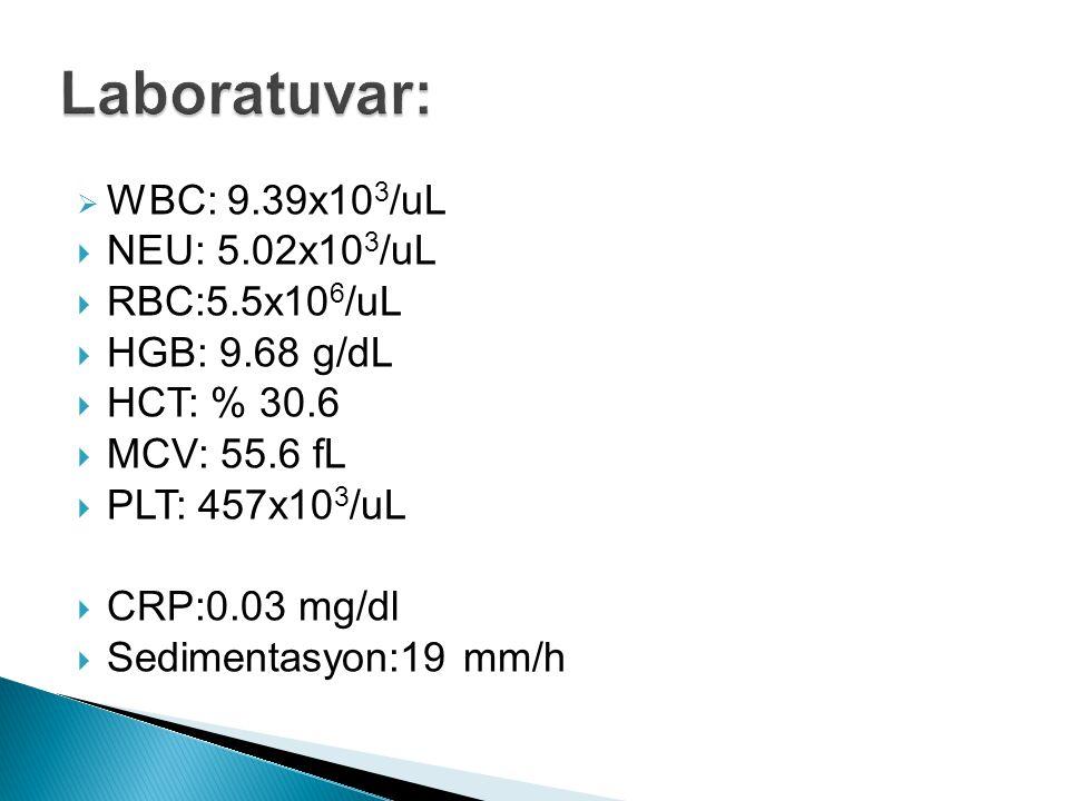  WBC: 9.39x10 3 /uL  NEU: 5.02x10 3 /uL  RBC:5.5x10 6 /uL  HGB: 9.68 g/dL  HCT: % 30.6  MCV: 55.6 fL  PLT: 457x10 3 /uL  CRP:0.03 mg/dl  Sedi