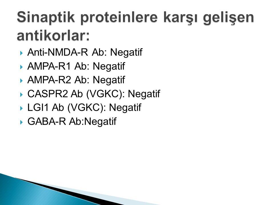  Anti-NMDA-R Ab: Negatif  AMPA-R1 Ab: Negatif  AMPA-R2 Ab: Negatif  CASPR2 Ab (VGKC): Negatif  LGI1 Ab (VGKC): Negatif  GABA-R Ab:Negatif
