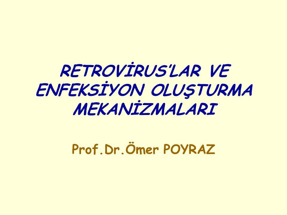 RETROVİRUS'LAR VE ENFEKSİYON OLUŞTURMA MEKANİZMALARI Prof.Dr.Ömer POYRAZ