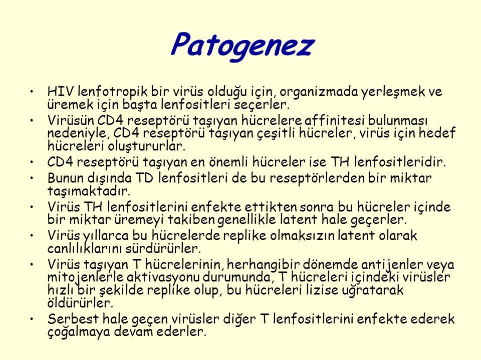 Patogenez HIV lenfotropik bir virüs olduğu için, organizmada yerleşmek ve üremek için başta lenfositleri seçerler. Virüsün CD4 reseptörü taşıyan hücre