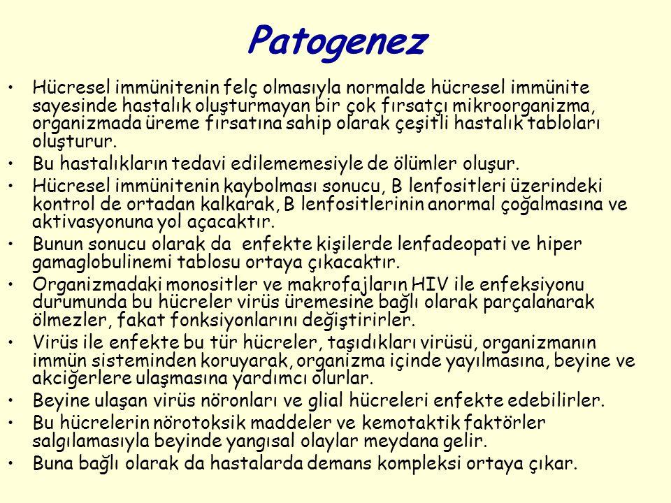 Patogenez Hücresel immünitenin felç olmasıyla normalde hücresel immünite sayesinde hastalık oluşturmayan bir çok fırsatçı mikroorganizma, organizmada