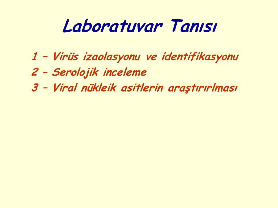 Laboratuvar Tanısı 1 – Virüs izaolasyonu ve identifikasyonu 2 – Serolojik inceleme 3 – Viral nükleik asitlerin araştırırlması