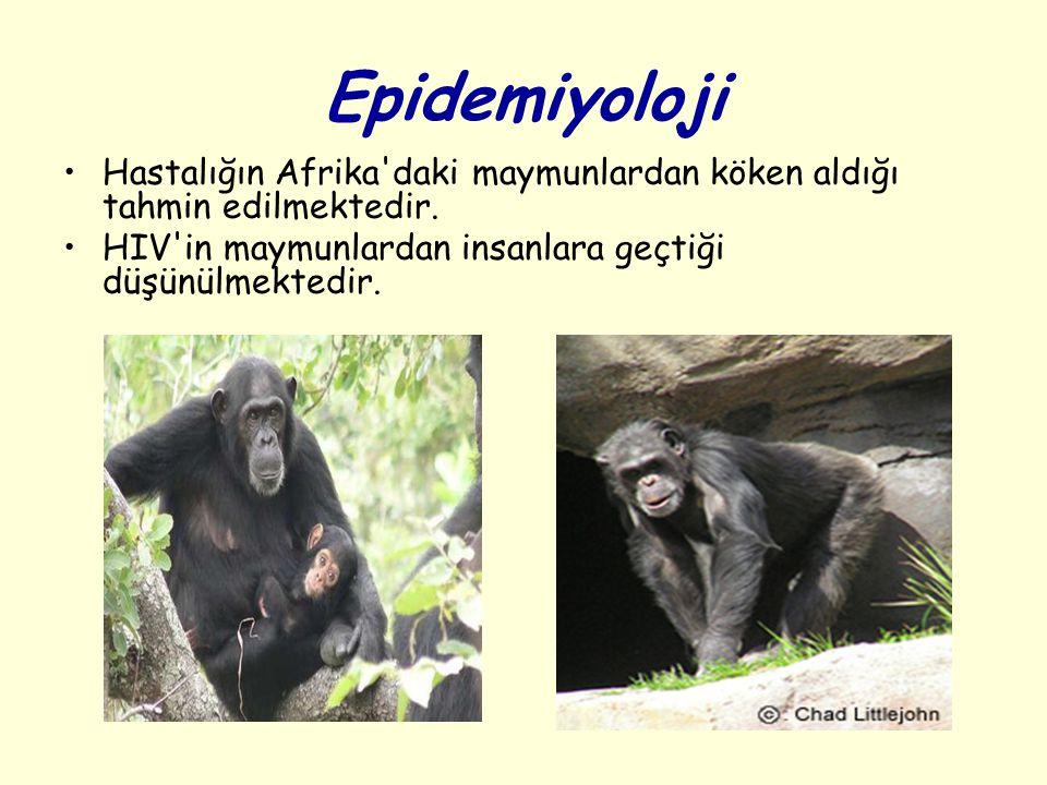 Epidemiyoloji Hastalığın Afrika'daki maymunlardan köken aldığı tahmin edilmektedir. HIV'in maymunlardan insanlara geçtiği düşünülmektedir.