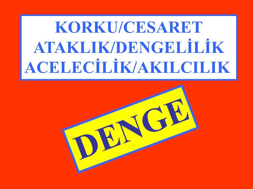KORKU/CESARET ATAKLIK/DENGELİLİK ACELECİLİK/AKILCILIK DENGE