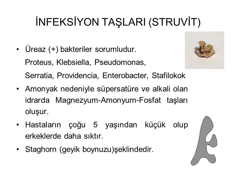 İNFEKSİYON TAŞLARI (STRUVİT) Üreaz (+) bakteriler sorumludur. Proteus, Klebsiella, Pseudomonas, Serratia, Providencia, Enterobacter, Stafilokok Amonya