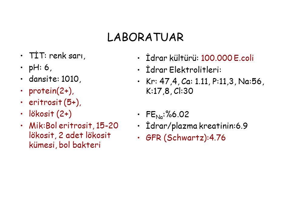 LABORATUAR TİT: renk sarı, pH: 6, dansite: 1010, protein(2+), eritrosit (5+), lökosit (2+) Mik:Bol eritrosit, 15-20 lökosit, 2 adet lökosit kümesi, bo