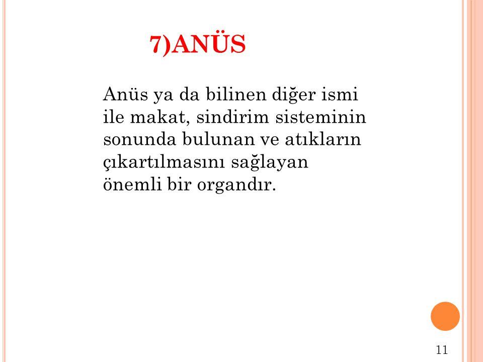 11 Anüs ya da bilinen diğer ismi ile makat, sindirim sisteminin sonunda bulunan ve atıkların çıkartılmasını sağlayan önemli bir organdır. 7)ANÜS