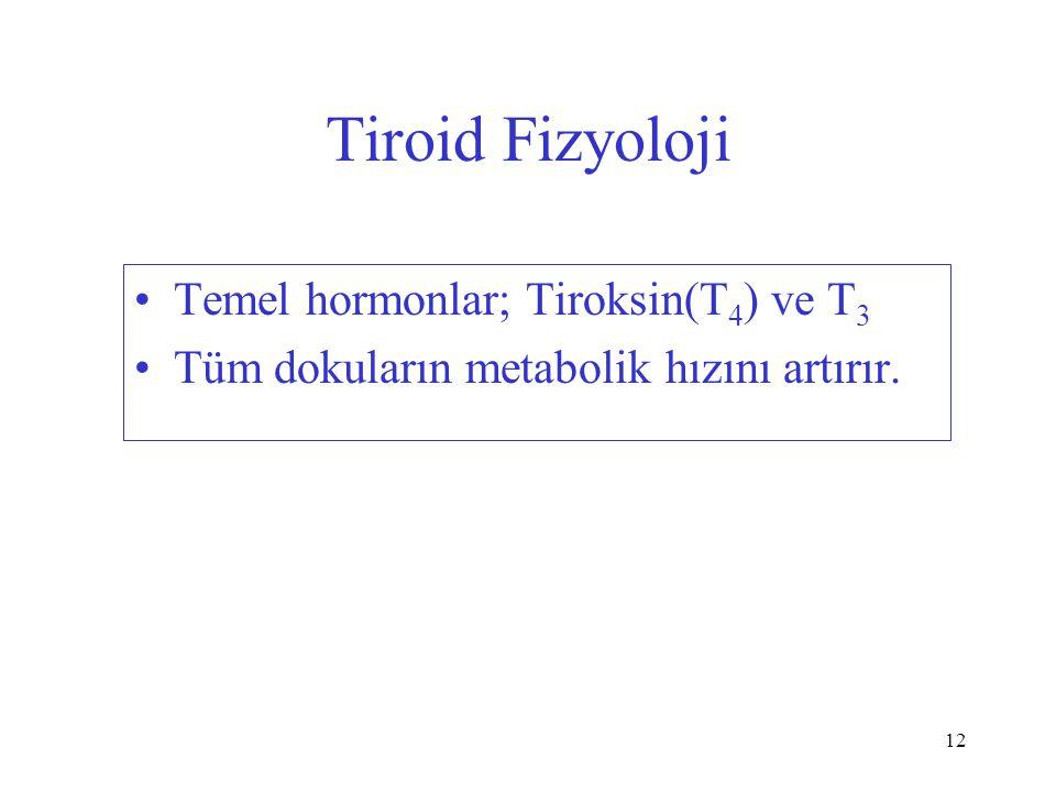 12 Tiroid Fizyoloji Temel hormonlar; Tiroksin(T 4 ) ve T 3 Tüm dokuların metabolik hızını artırır.