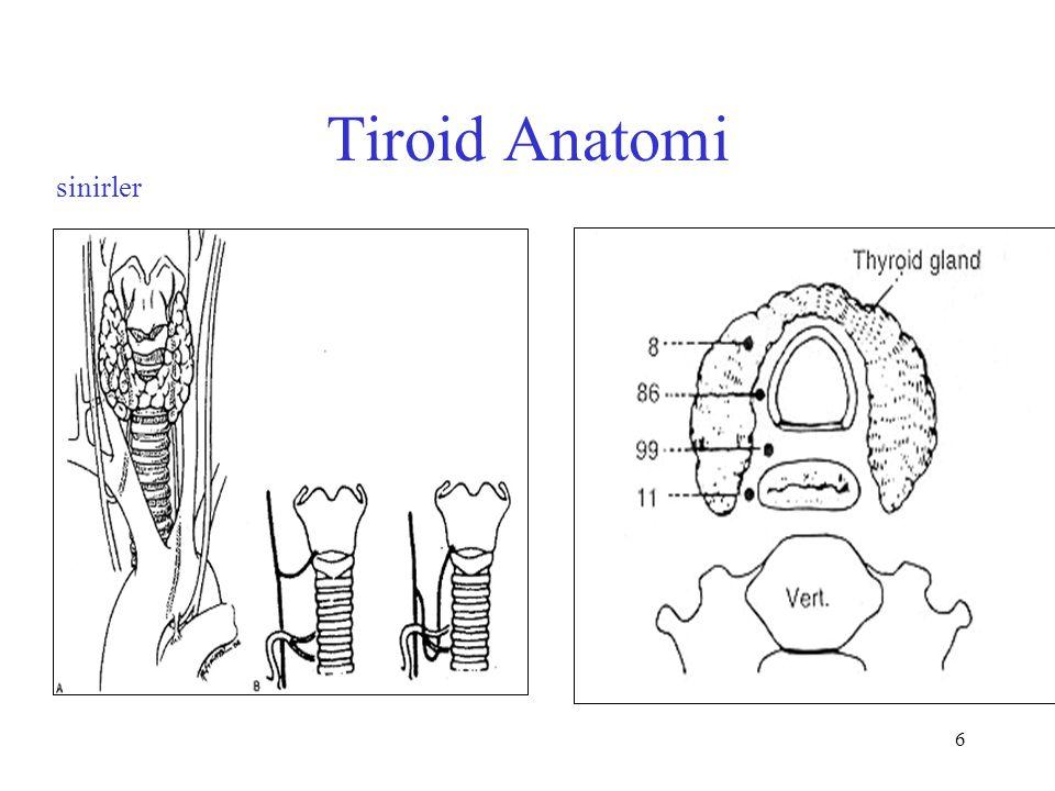 6 Tiroid Anatomi sinirler