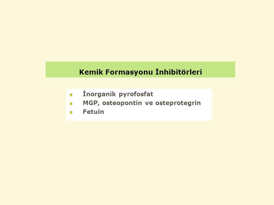 Kemik Formasyonu İnhibitörleri İnorganik pyrofosfat MGP, osteopontin ve osteprotegrin Fetuin