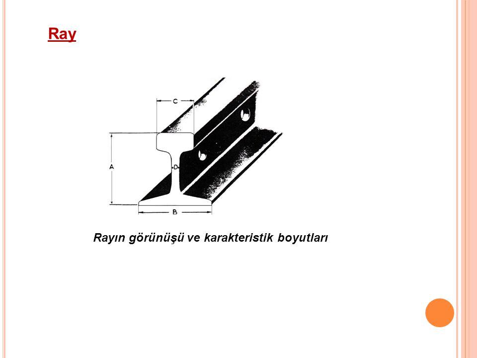 Ray Rayın görünüşü ve karakteristik boyutları 36