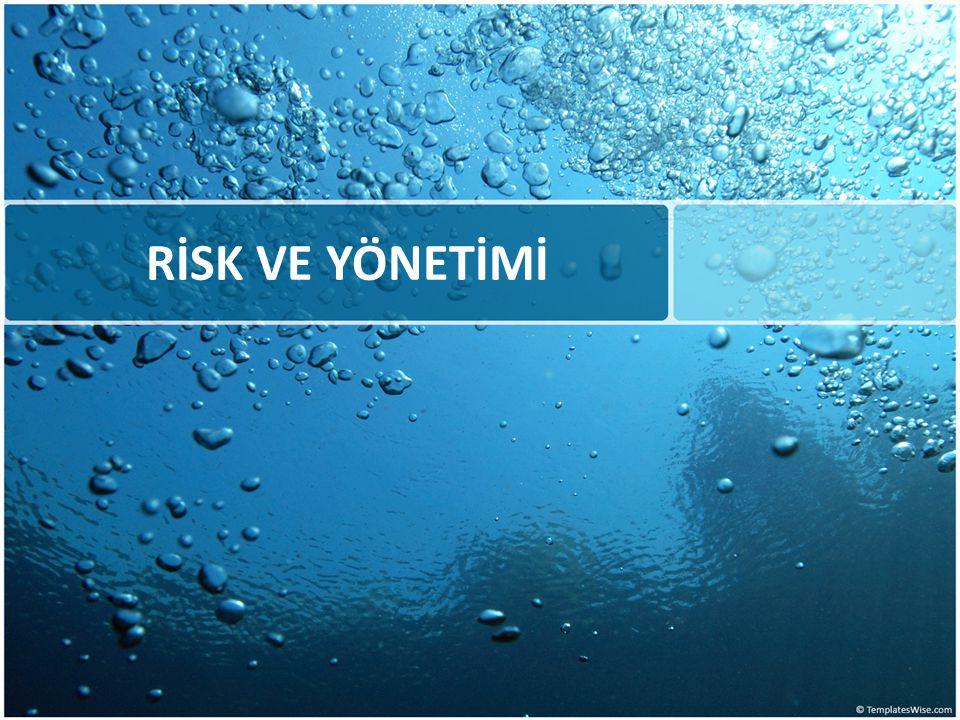c- Yönetim Riski İşletmelerin yönetim kadrolarının yeteneklerine bağlı olarak ortaya çıkan risktir.