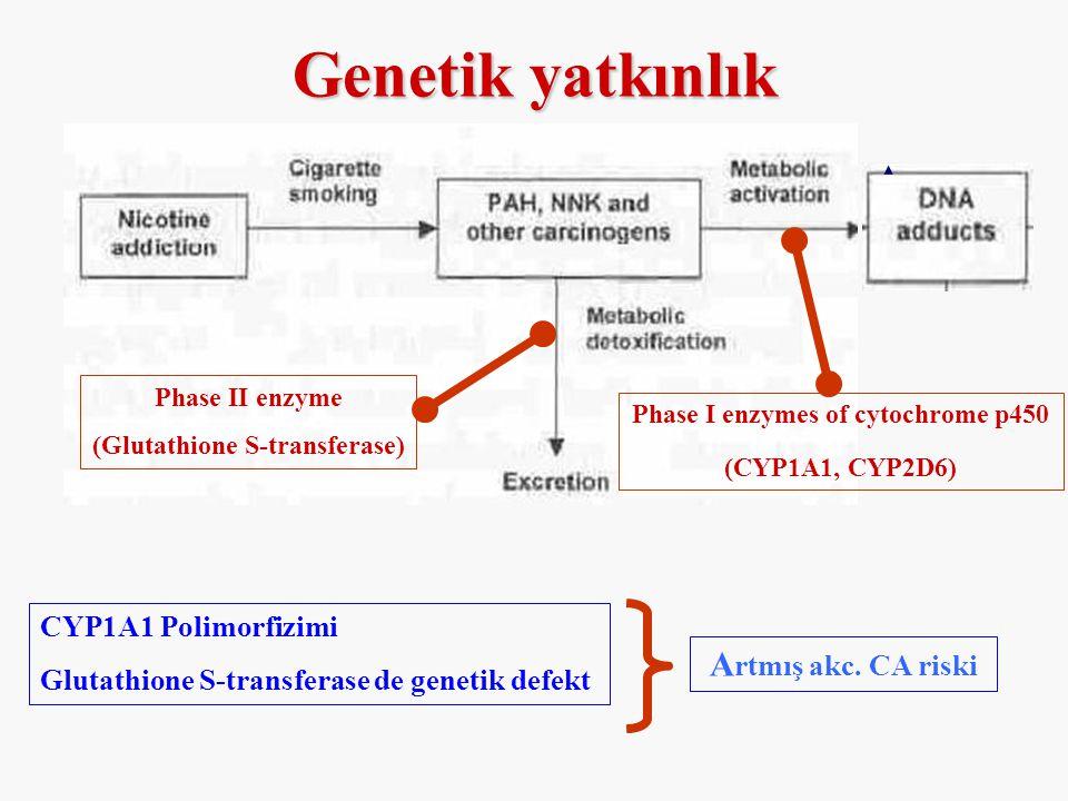 Genetik yatkınlık Phase II enzyme (Glutathione S-transferase) Phase I enzymes of cytochrome p450 (CYP1A1, CYP2D6) CYP1A1 Polimorfizimi Glutathione S-t