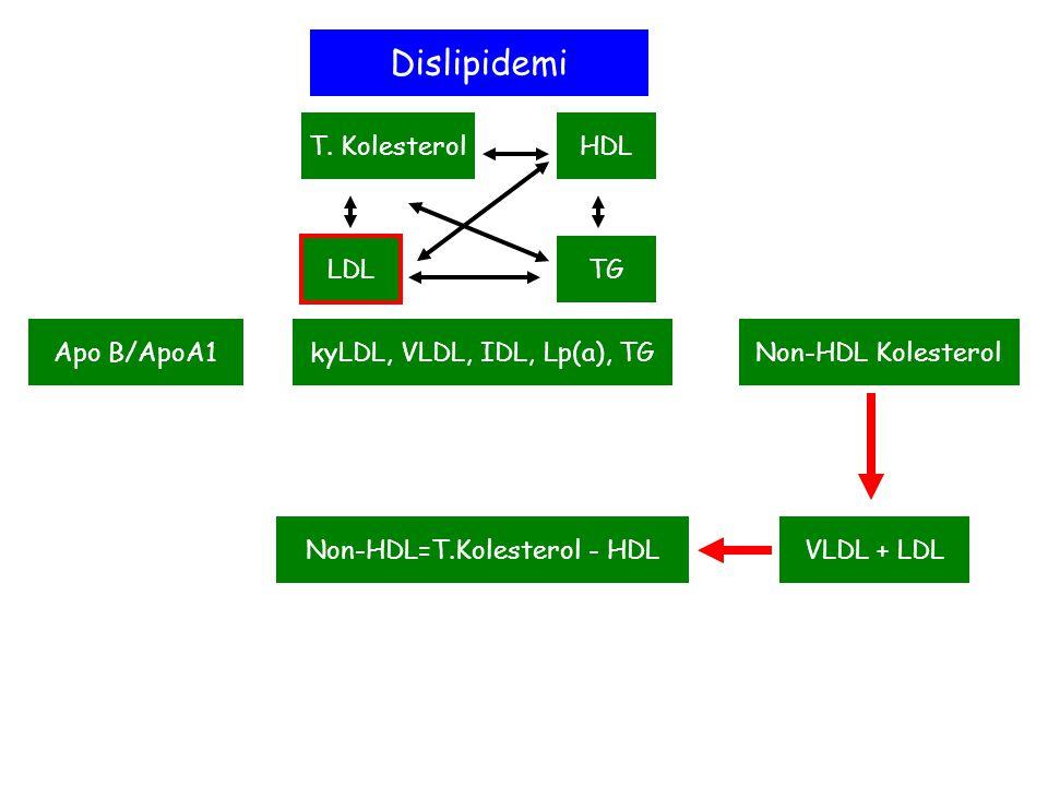 Hiperkolesterolemi T. KolesterolHDL LDL TG kyLDL, VLDL, IDL, Lp(a), TGNon-HDL KolesterolApo B/ApoA1 Dislipidemi VLDL + LDLNon-HDL=T.Kolesterol - HDL