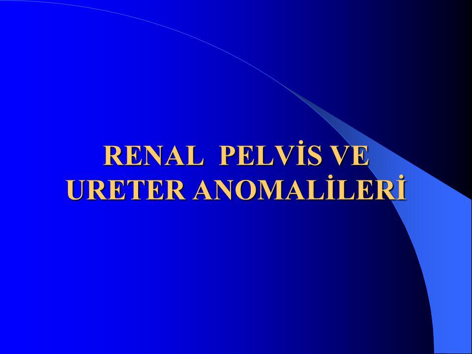 RENAL PELVİS VE URETER ANOMALİLERİ