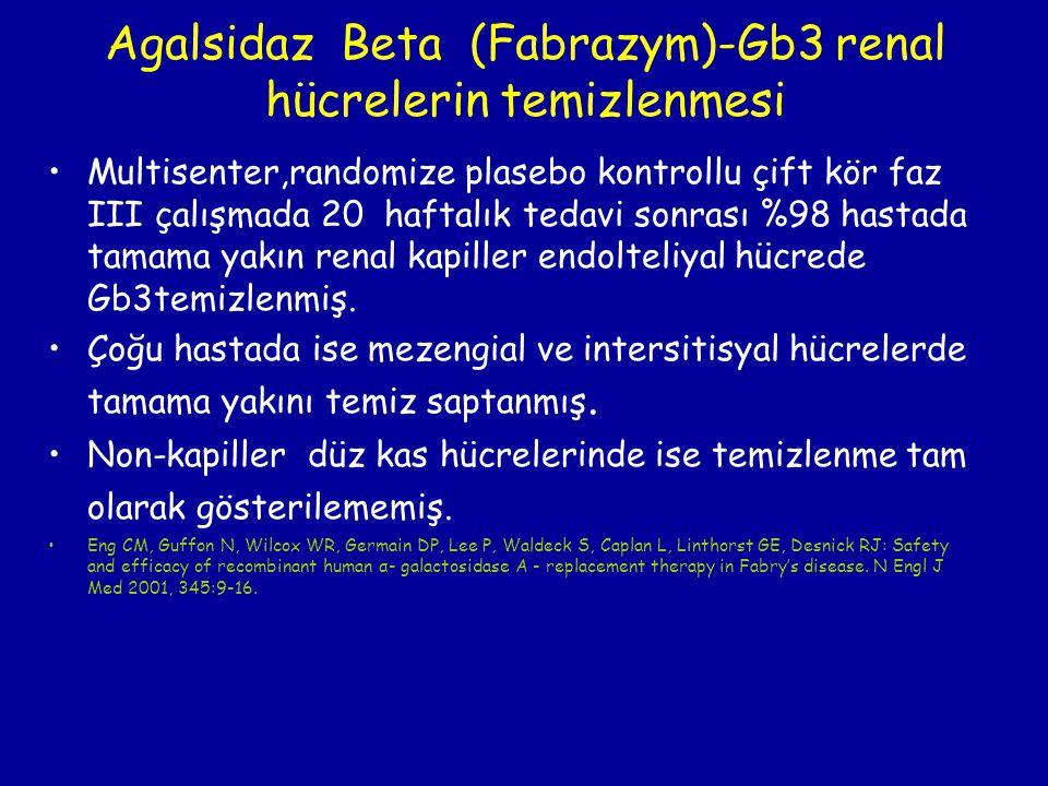 Agalsidaz Beta (Fabrazym)-Gb3 renal hücrelerin temizlenmesi Multisenter,randomize plasebo kontrollu çift kör faz III çalışmada 20 haftalık tedavi sonr