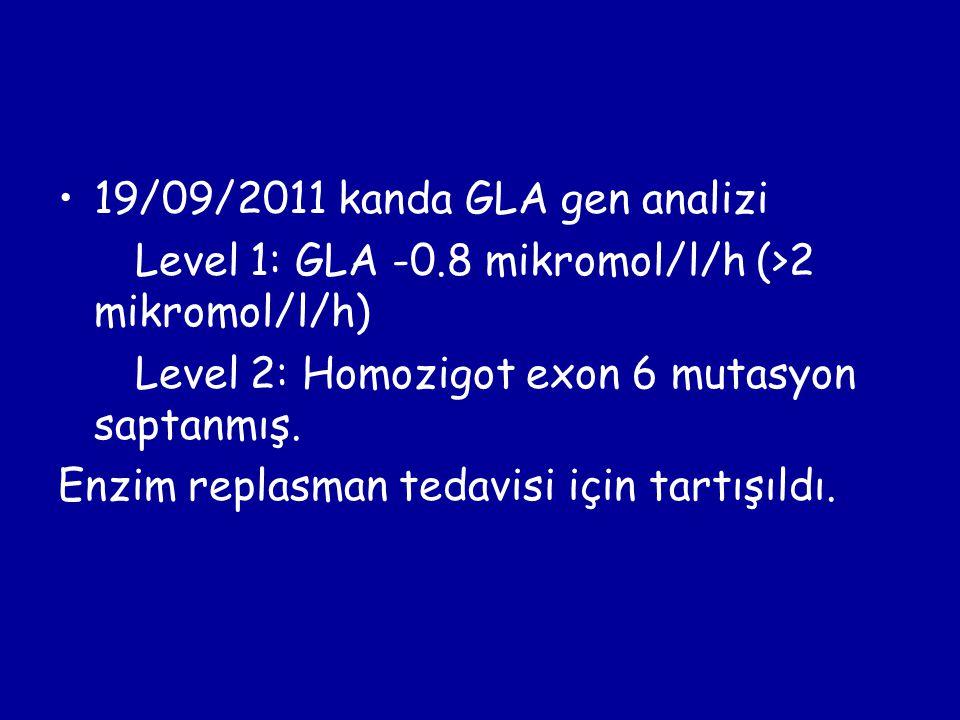 19/09/2011 kanda GLA gen analizi Level 1: GLA -0.8 mikromol/l/h (>2 mikromol/l/h) Level 2: Homozigot exon 6 mutasyon saptanmış. Enzim replasman tedavi