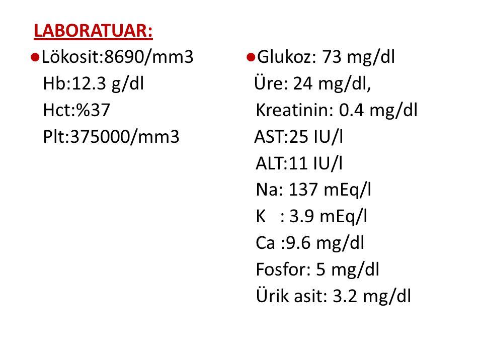 LABORATUAR: ●Lökosit:8690/mm3 ●Glukoz: 73 mg/dl Hb:12.3 g/dl Üre: 24 mg/dl, Hct:%37 Kreatinin: 0.4 mg/dl Plt:375000/mm3 AST:25 IU/l ALT:11 IU/l Na: 137 mEq/l K : 3.9 mEq/l Ca :9.6 mg/dl Fosfor: 5 mg/dl Ürik asit: 3.2 mg/dl