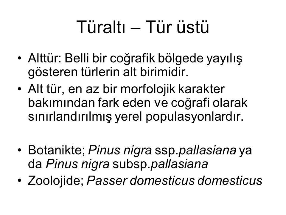 Türaltı – Tür üstü Alttür: Belli bir coğrafik bölgede yayılış gösteren türlerin alt birimidir. Alt tür, en az bir morfolojik karakter bakımından fark