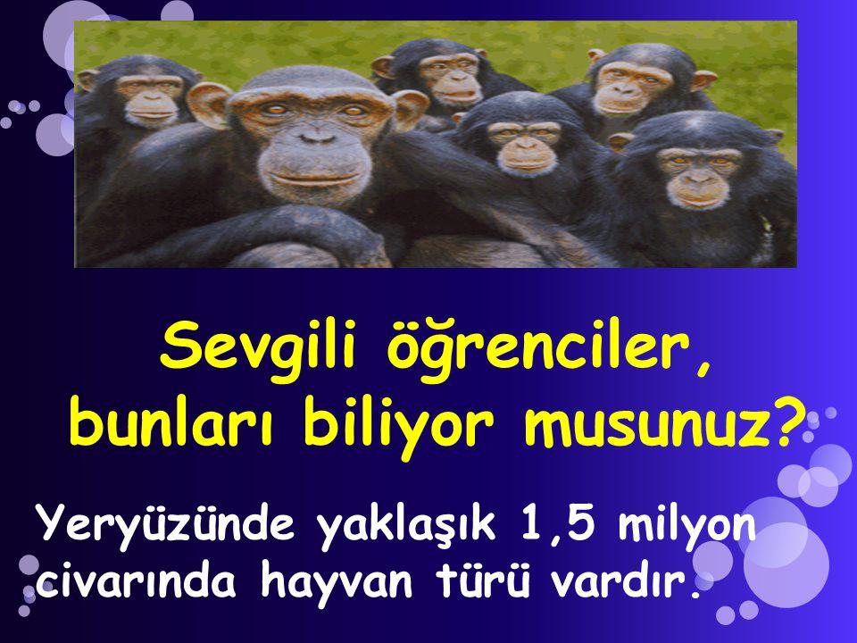 Sevgili öğrenciler, bunları biliyor musunuz? Yeryüzünde yaklaşık 1,5 milyon civarında hayvan türü vardır.
