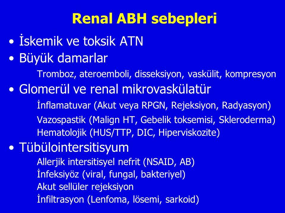 Renal ABH sebepleri İskemik ve toksik ATN Büyük damarlar Tromboz, ateroemboli, disseksiyon, vaskülit, kompresyon Glomerül ve renal mikrovaskülatür İnflamatuvar (Akut veya RPGN, Rejeksiyon, Radyasyon) Vazospastik (Malign HT, Gebelik toksemisi, Skleroderma) Hematolojik (HUS/TTP, DIC, Hiperviskozite) Tübülointersitisyum Allerjik intersitisyel nefrit (NSAID, AB) İnfeksiyöz (viral, fungal, bakteriyel) Akut sellüler rejeksiyon İnfiltrasyon (Lenfoma, lösemi, sarkoid)