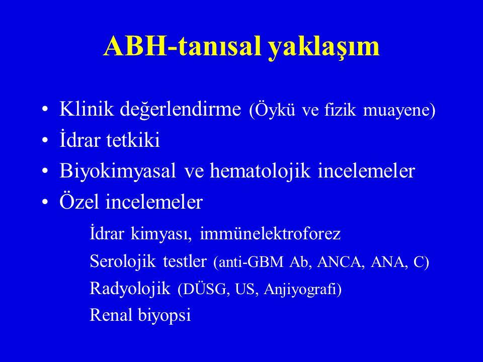 ABH-tanısal yaklaşım Klinik değerlendirme (Öykü ve fizik muayene) İdrar tetkiki Biyokimyasal ve hematolojik incelemeler Özel incelemeler İdrar kimyası, immünelektroforez Serolojik testler (anti-GBM Ab, ANCA, ANA, C) Radyolojik (DÜSG, US, Anjiyografi) Renal biyopsi