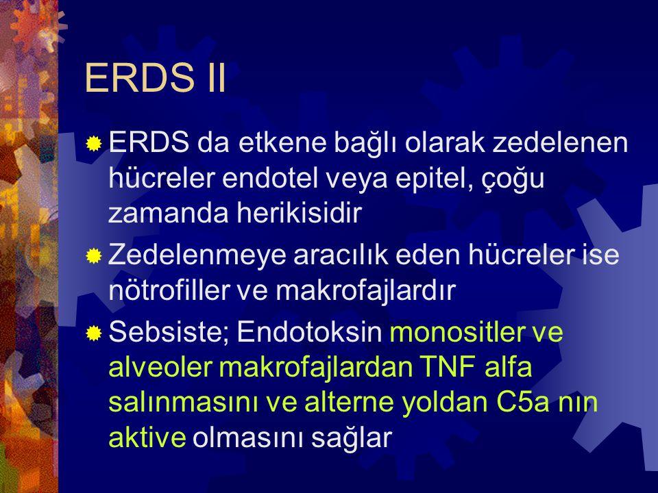 ERDS II  ERDS da etkene bağlı olarak zedelenen hücreler endotel veya epitel, çoğu zamanda herikisidir  Zedelenmeye aracılık eden hücreler ise nötrof
