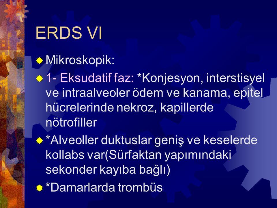 ERDS VI  Mikroskopik:  1- Eksudatif faz: *Konjesyon, interstisyel ve intraalveoler ödem ve kanama, epitel hücrelerinde nekroz, kapillerde nötrofille