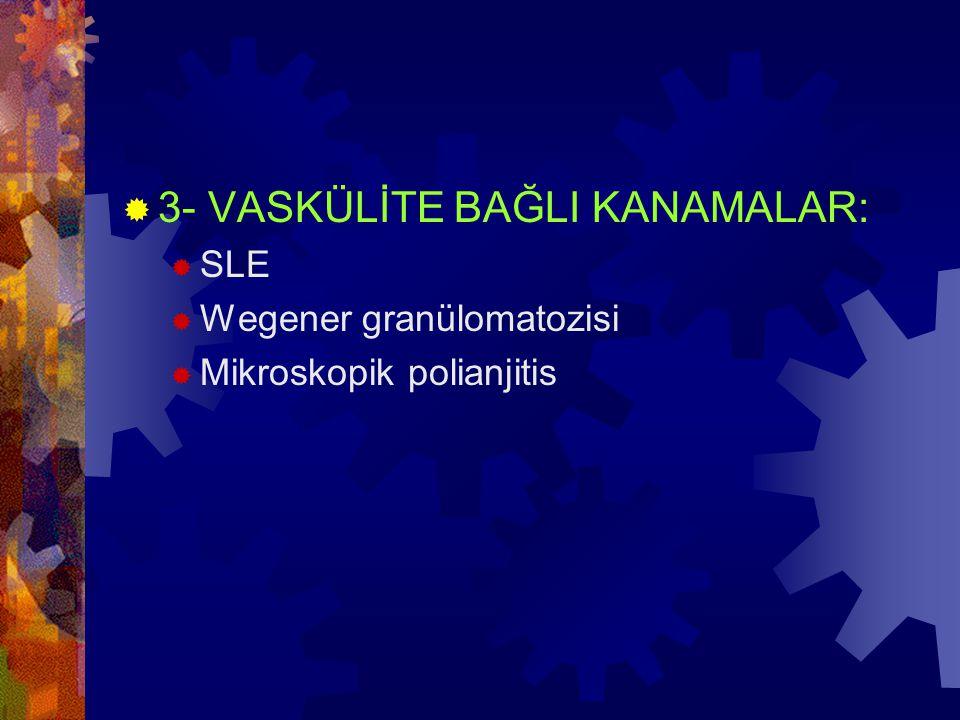 ERDS IV  Aktive nötrofiller ve makr.