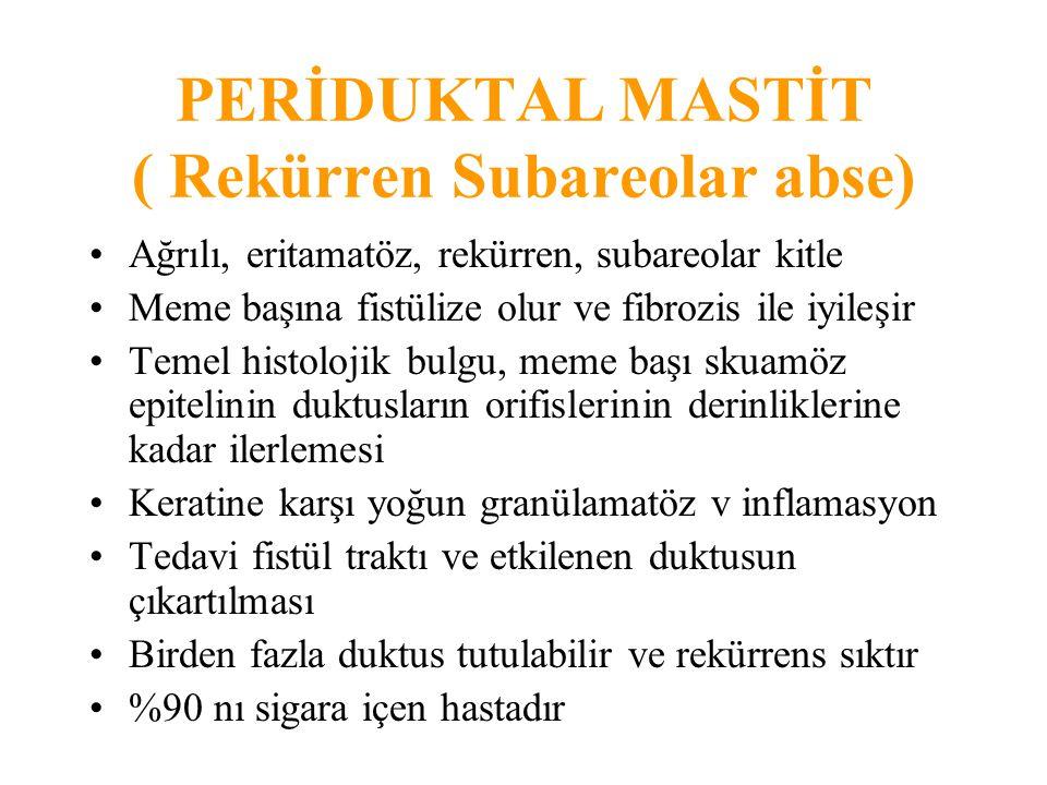 DUKTAL EKTAZİ (Plazma Hücreli Mastit) 5-6.