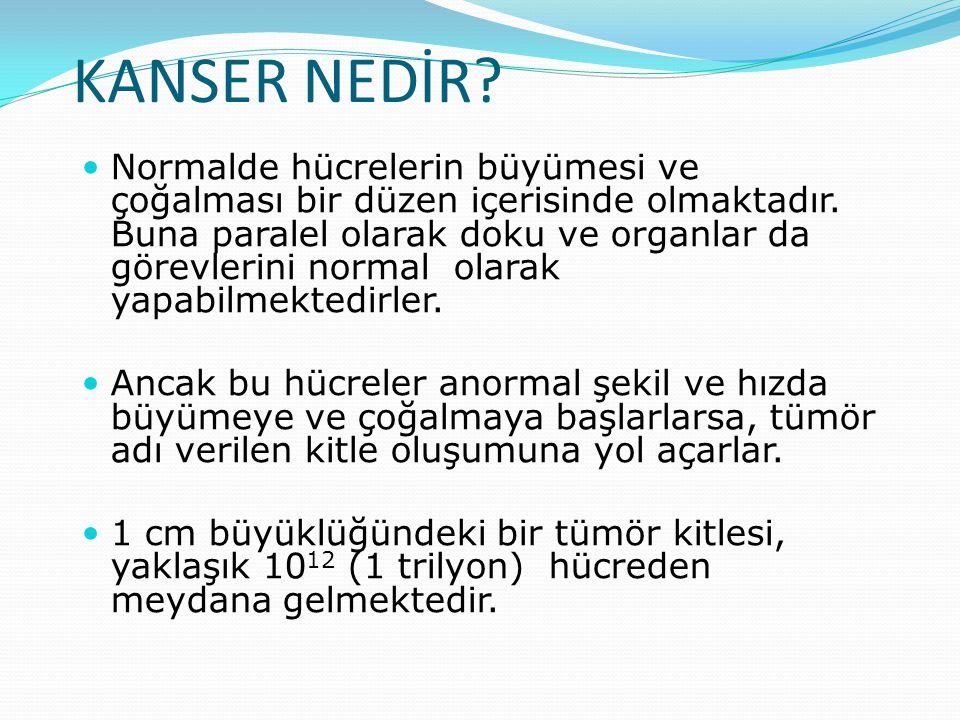 Kanser vücuttaki bir hücre grubunun aşırı ve kontrolsüz şekilde çoğalması sonucu meydana gelmektedir Bu anormal hücrelerin köken aldığı organa göre hastalık adlandırılır.