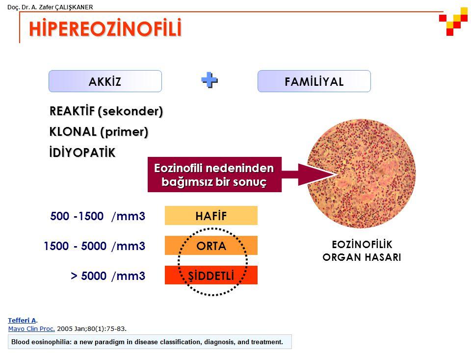 Doç. Dr. A. Zafer ÇALIŞKANER HİPEREOZİNOFİLİ REAKTİF (sekonder) KLONAL (primer) İDİYOPATİK FAMİLİYAL AKKİZ 500 -1500 /mm3HAFİF 1500 - 5000 /mm3ORTA >