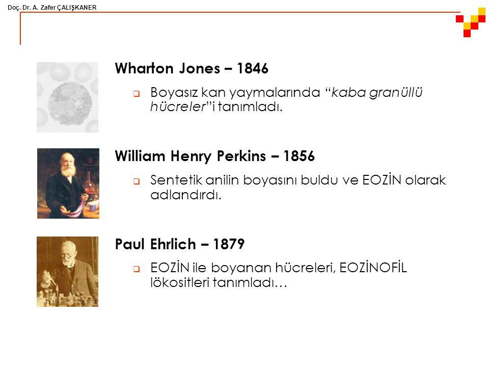 """Doç. Dr. A. Zafer ÇALIŞKANER Wharton Jones – 1846  Boyasız kan yaymalarında """"kaba granüllü hücreler""""i tanımladı. William Henry Perkins – 1856  Sente"""