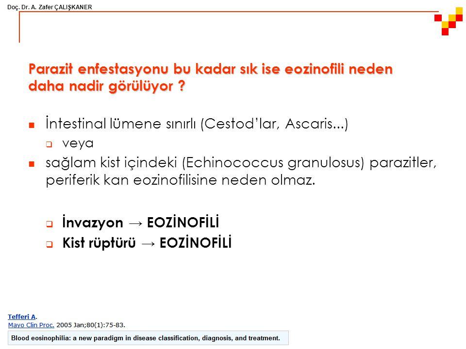 Doç. Dr. A. Zafer ÇALIŞKANER Parazit enfestasyonu bu kadar sık ise eozinofili neden daha nadir görülüyor ? İntestinal lümene sınırlı (Cestod'lar, Asca