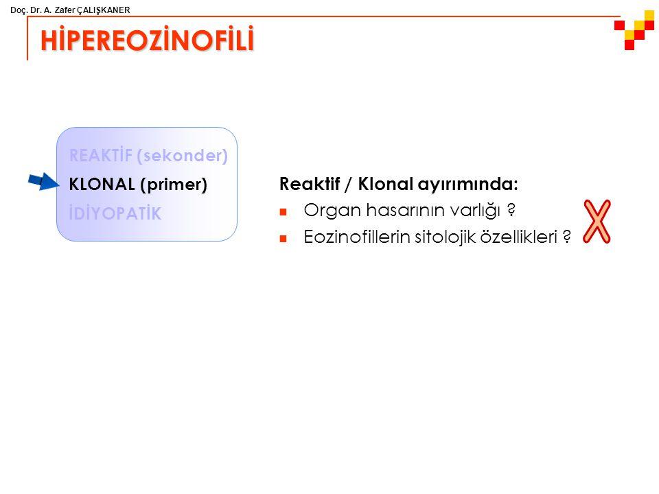 Doç. Dr. A. Zafer ÇALIŞKANER HİPEREOZİNOFİLİ Reaktif / Klonal ayırımında: Organ hasarının varlığı ? Eozinofillerin sitolojik özellikleri ? REAKTİF (se