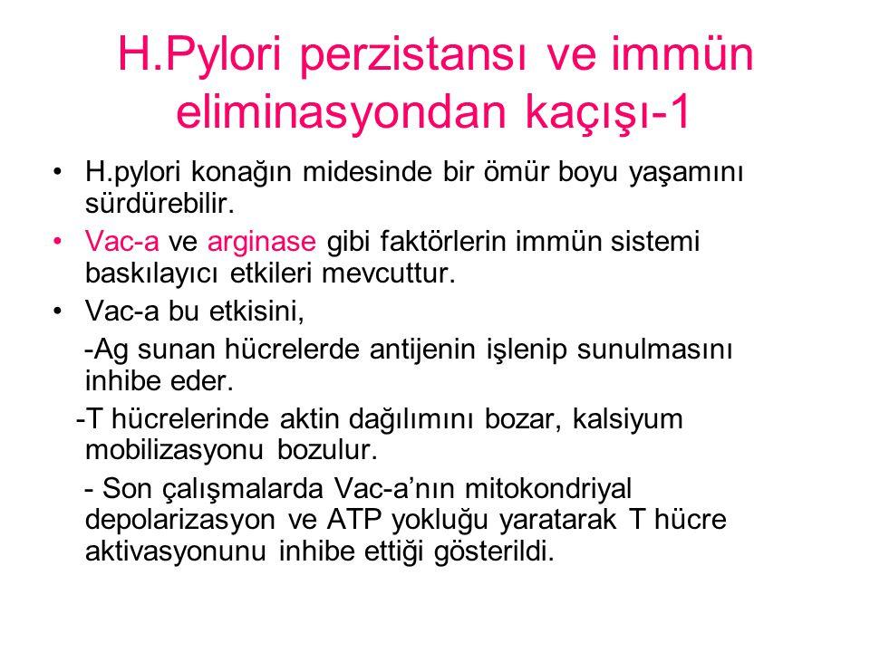 H.Pylori perzistansı ve immün eliminasyondan kaçışı-1 H.pylori konağın midesinde bir ömür boyu yaşamını sürdürebilir.