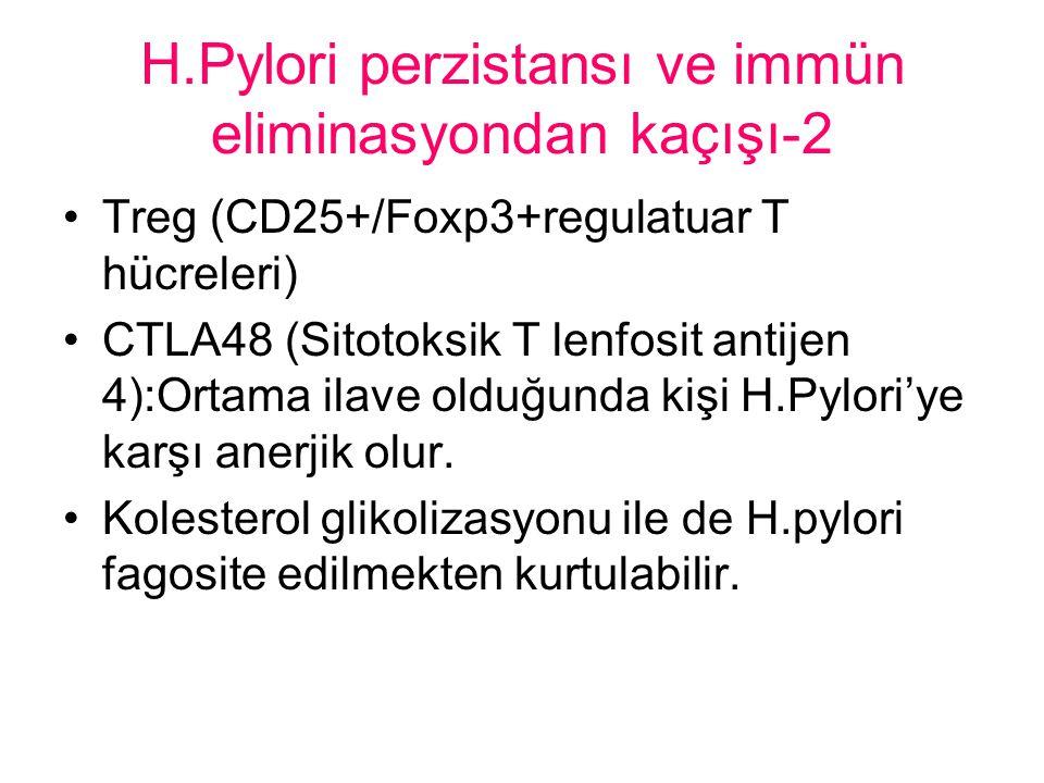 H.Pylori perzistansı ve immün eliminasyondan kaçışı-2 Treg (CD25+/Foxp3+regulatuar T hücreleri) CTLA48 (Sitotoksik T lenfosit antijen 4):Ortama ilave olduğunda kişi H.Pylori'ye karşı anerjik olur.