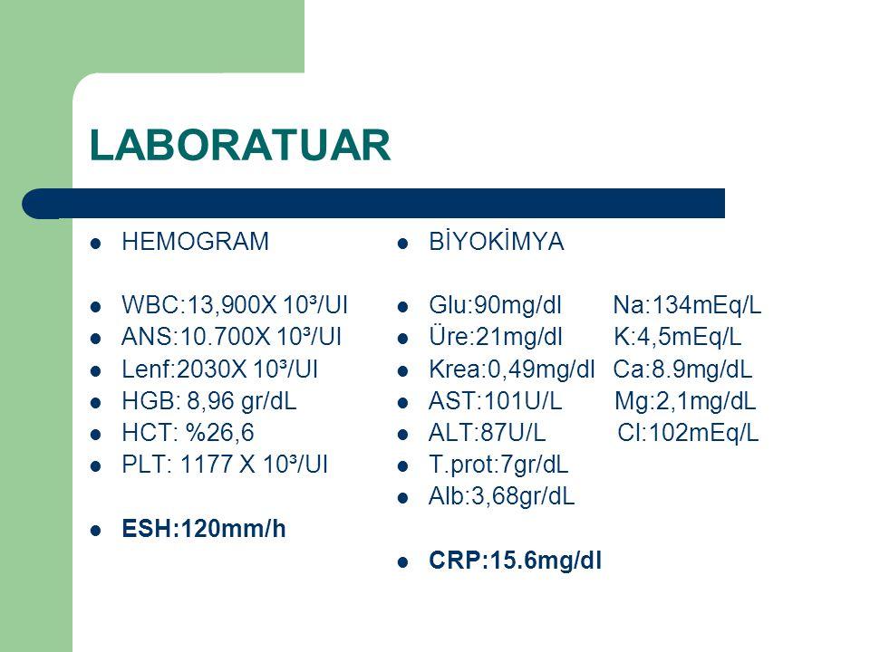 LABORATUAR HEMOGRAM WBC:13,900X 10³/Ul ANS:10.700X 10³/Ul Lenf:2030X 10³/Ul HGB: 8,96 gr/dL HCT: %26,6 PLT: 1177 X 10³/Ul ESH:120mm/h BİYOKİMYA Glu:90