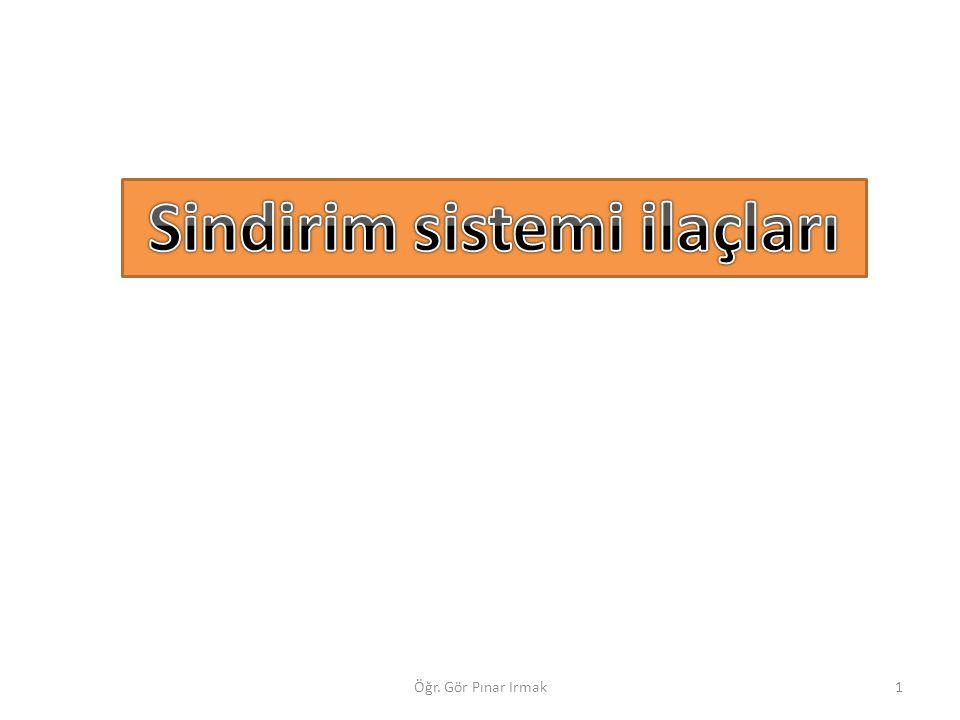 1Öğr. Gör Pınar Irmak