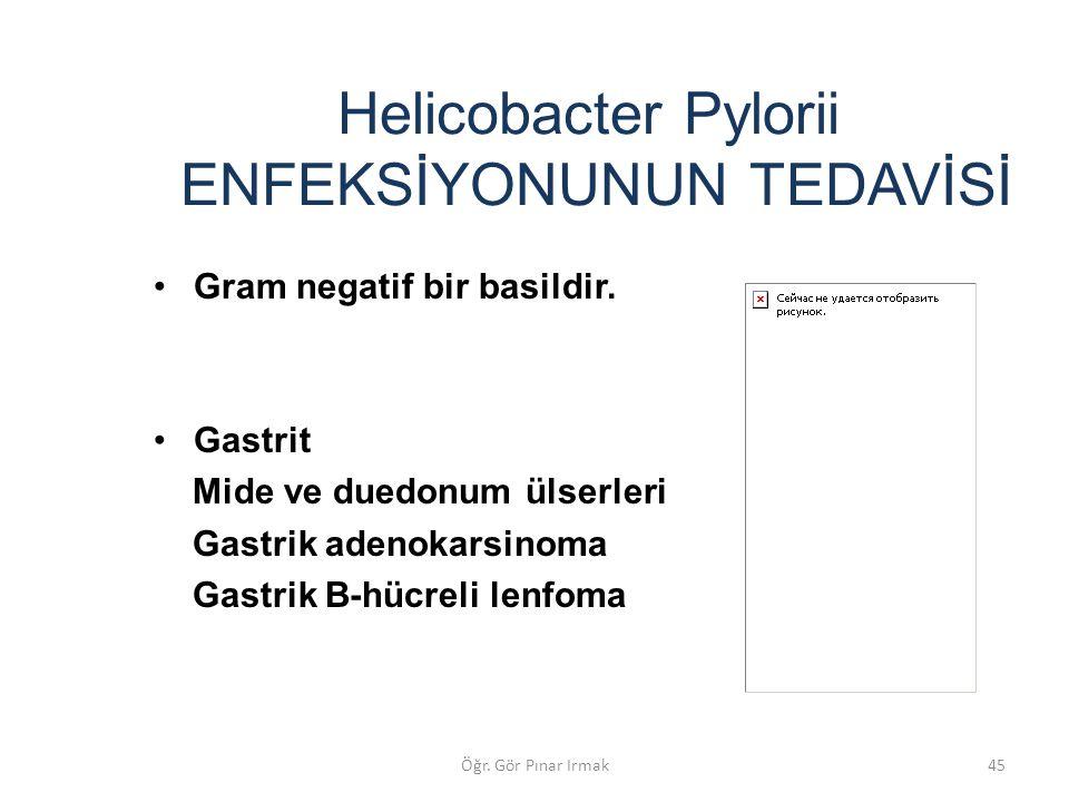 Helicobacter Pylorii ENFEKSİYONUNUN TEDAVİSİ Gram negatif bir basildir. Gastrit Mide ve duedonum ülserleri Gastrik adenokarsinoma Gastrik B-hücreli le