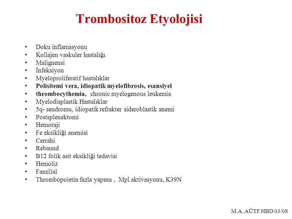 M.A. AÜTF HBD 03/08 Trombositoz Etyolojisi Doku inflamasyonu Kollajen vaskuler hastalığı Malignensi İnfeksiyon Myeloproliferatif hastalıklar Polisitem