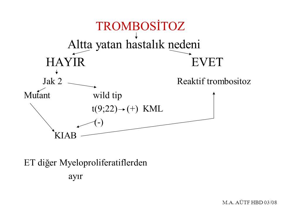 M.A. AÜTF HBD 03/08 TROMBOSİTOZ Altta yatan hastalık nedeni HAYIR EVET Jak 2 Reaktif trombositoz Mutant wild tip t(9;22) (+) KML (-) KIAB ET diğer Mye