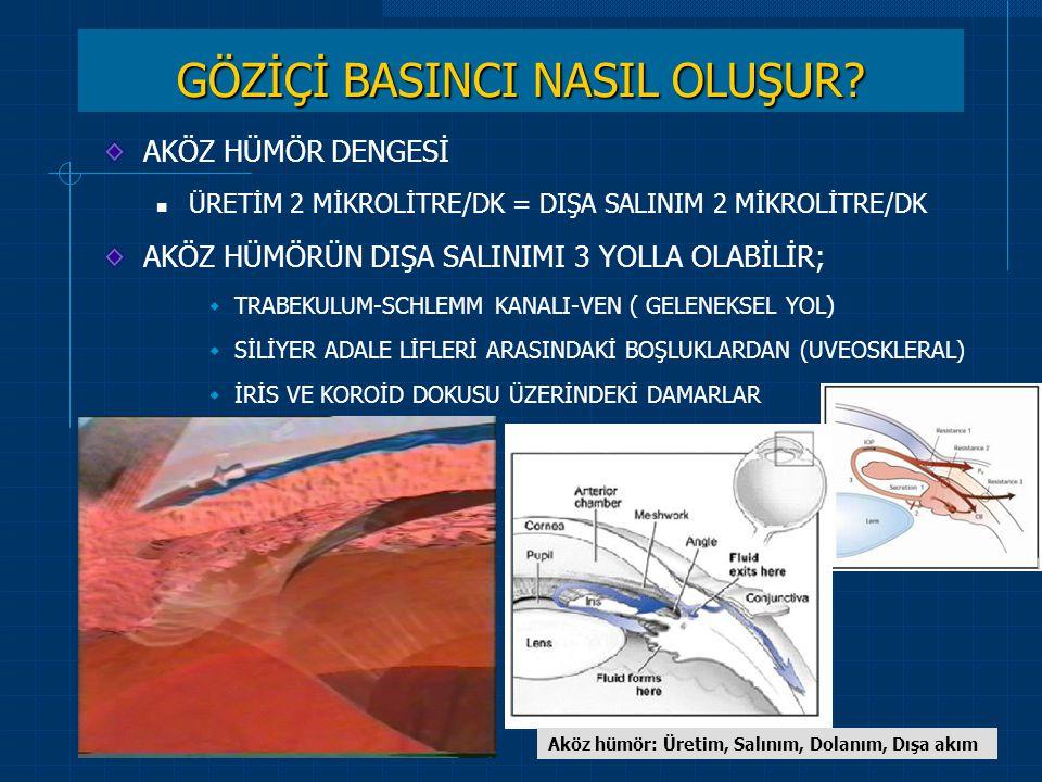 CERRAHPAŞA ÖĞRENCİ DERSLERİ-2009 GLOKOMDA OLGU SUNUMLARI PROF.DR.ÖZCAN OCAKOĞLU