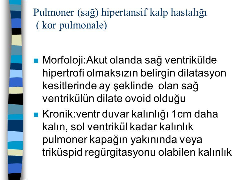 Pulmoner (sağ) hipertansif kalp hastalığı ( kor pulmonale) n Morfoloji:Akut olanda sağ ventrikülde hipertrofi olmaksızın belirgin dilatasyon kesitleri