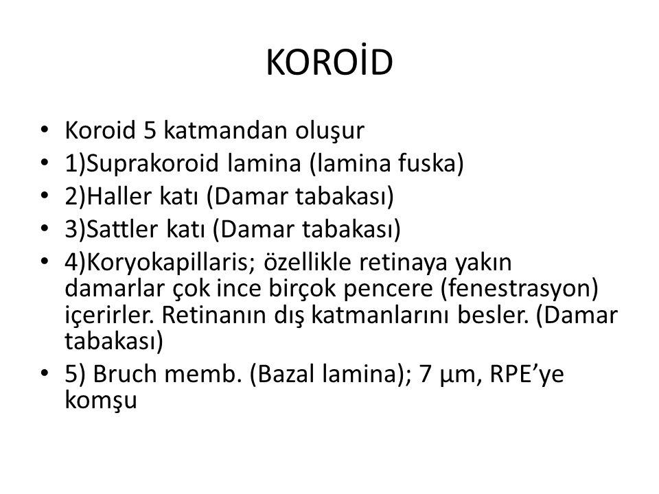 KOROİD Koroid 5 katmandan oluşur 1)Suprakoroid lamina (lamina fuska) 2)Haller katı (Damar tabakası) 3)Sattler katı (Damar tabakası) 4)Koryokapillaris;